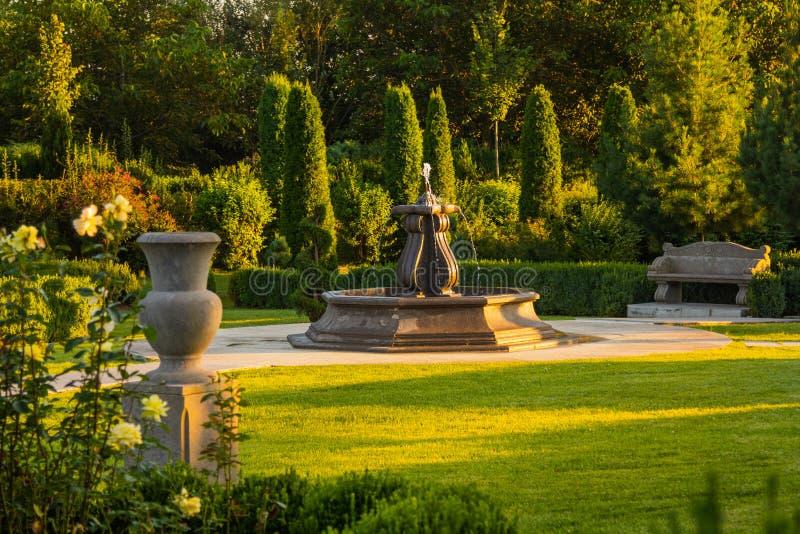 Красивый зеленый сад стоковые фото