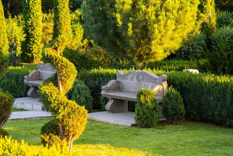Красивый зеленый сад стоковые изображения rf