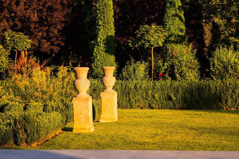 Красивый зеленый сад стоковое фото