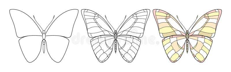 Красивый значок бабочки Иллюстрация вектора установленная изолирована на белой предпосылке Искусство насекомых декоративный элеме иллюстрация вектора