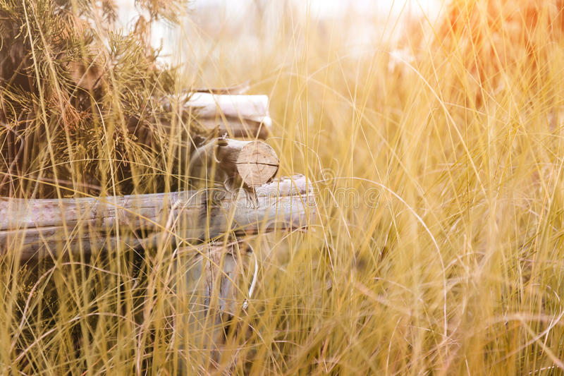 Красивый дизайн ландшафта, путь сада кроет крупный план черепицей с woode стоковое фото
