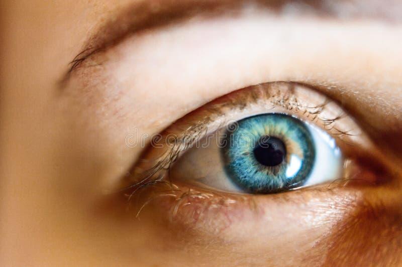Красивый изолированный глаз женщины стоковые изображения