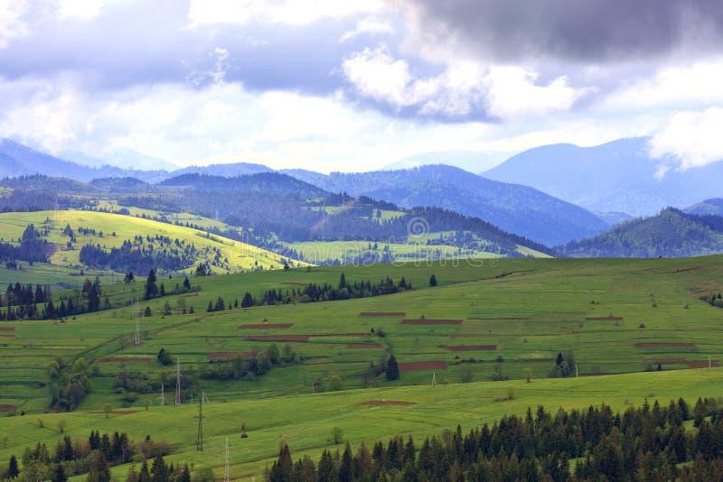 Красивый и величественный ландшафт горы прикарпатских гор стоковая фотография
