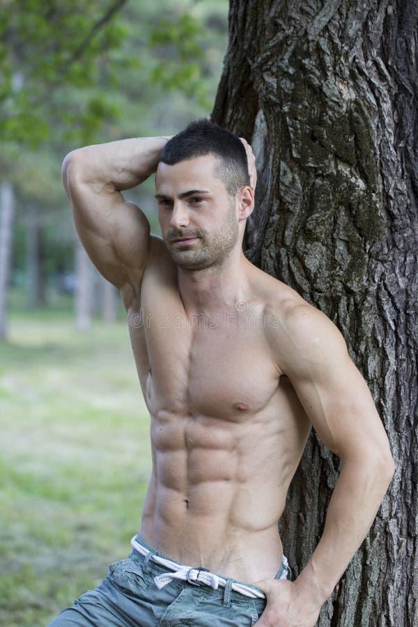 Красивый и привлекательный мышечный молодой человек отдыхая в парке стоковые фотографии rf