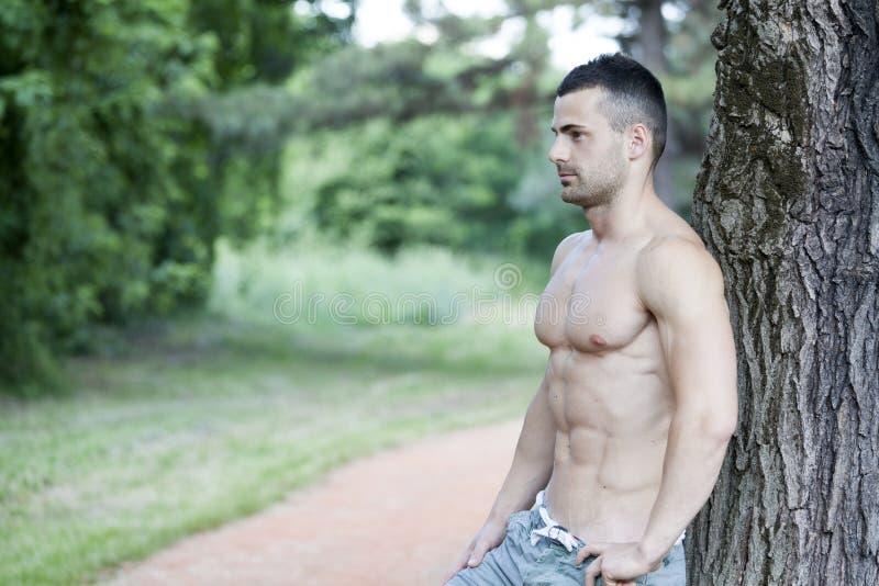 Красивый и привлекательный мышечный молодой человек отдыхая в парке стоковое изображение