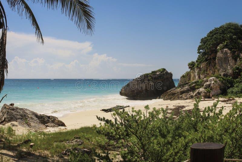 Красивый карибский пляж в Юкатане Мексике стоковое фото rf