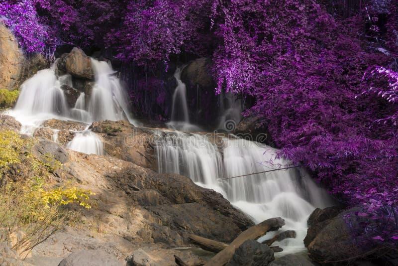 Красивый ландшафт водопада Водопад Pha Sua в Maehongson, Таиланде стоковые фотографии rf
