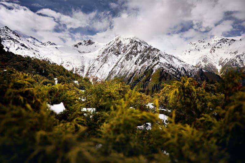 Красивый ландшафт гор стоковое изображение