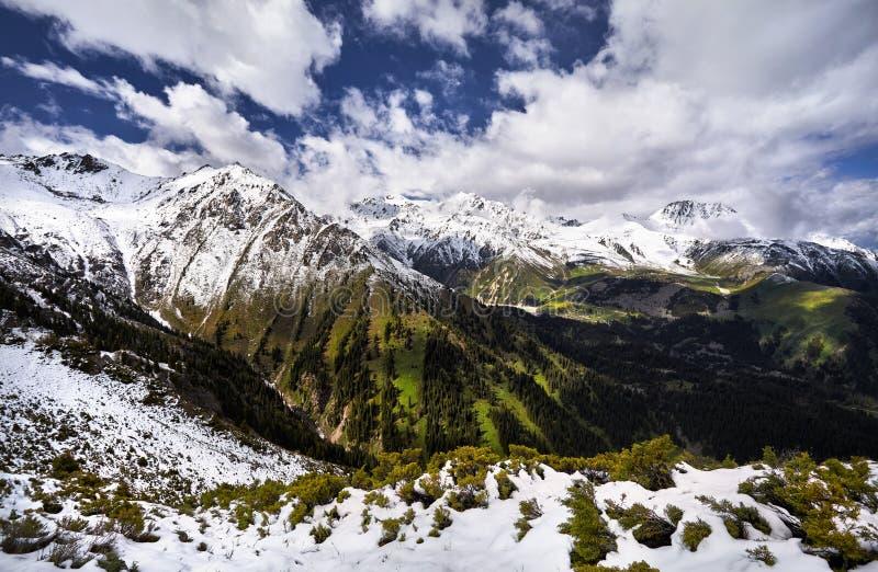 Красивый ландшафт гор стоковое фото rf