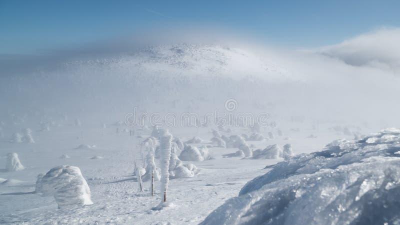 Красивый ландшафт зимы в горах на солнечный, яркий день, с деревьями предусматриванными с огромным количеством снега с изумляя фо стоковая фотография