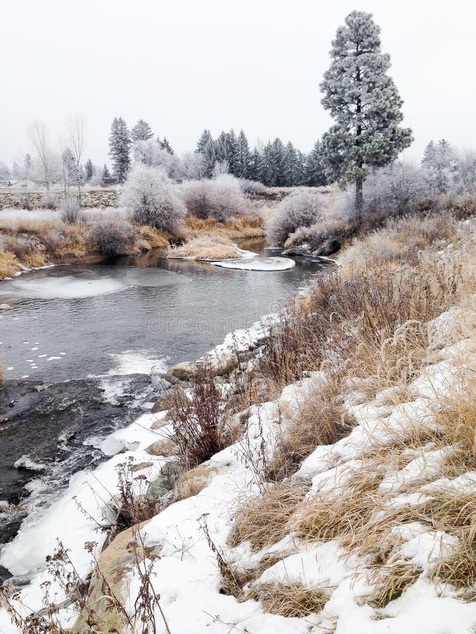 Красивый ландшафт зимы с изморозью стоковые изображения