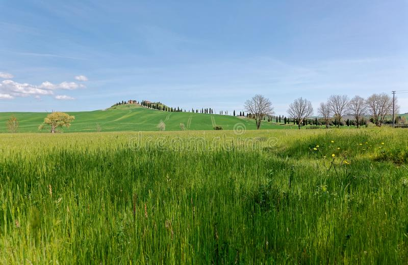 Красивый ландшафт идилличной сельской местности Тосканы в весеннем времени, при проселочная дорога замотки выровнянная с кипариса стоковое изображение