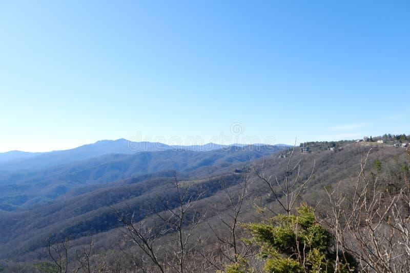 Красивый ландшафт леса взгляда холма с голубым небом стоковые фото