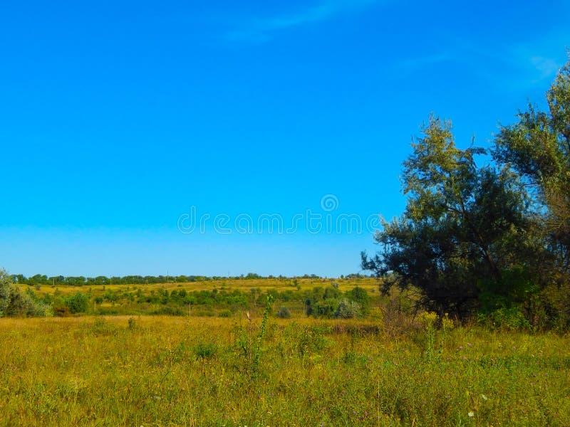 Красивый ландшафт лета на заходе солнца Луг сельской местности стоковые фотографии rf