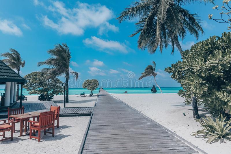 Красивый ландшафт на Maldive островах стоковое фото rf