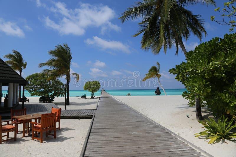 Красивый ландшафт на Maldive островах стоковые изображения