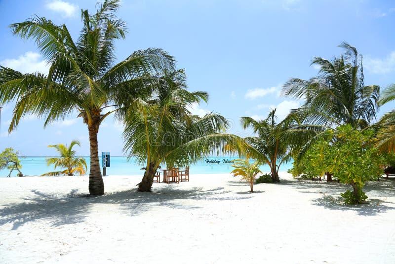 Красивый ландшафт на Maldive островах стоковая фотография