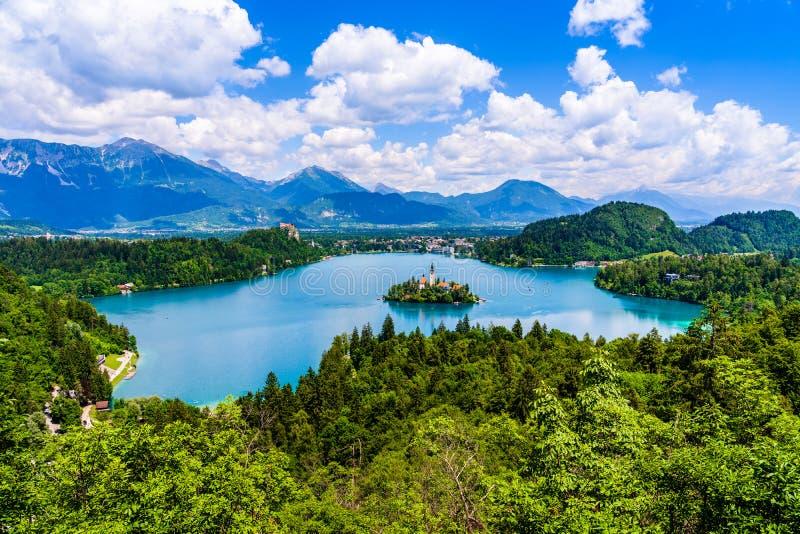 Красивый ландшафт озера кровоточил остров церков в середине и замок на заднем плане белого, который заволокли неба от стоковое изображение rf