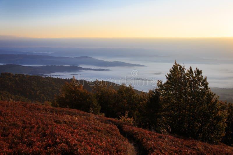 Красивый ландшафт осени в прикарпатских горах стоковые изображения rf