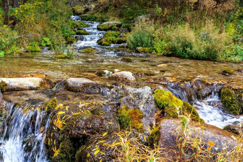 Красивый ландшафт осени с рекой горы, камнями, мхом и зеленой травой стоковое фото rf
