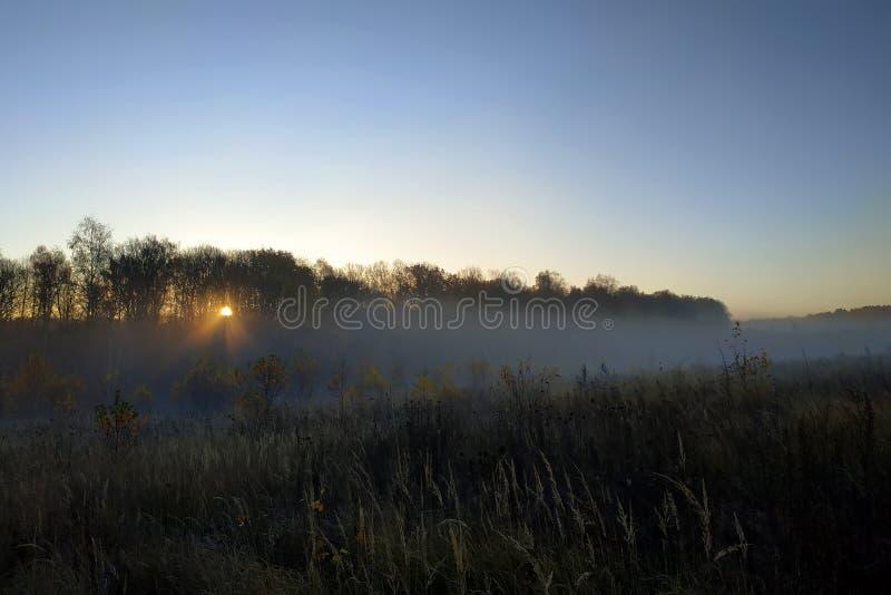 Красивый ландшафт падения осени восхода солнца сильного тумана над полями с туманом treetops видимым сквозным стоковое фото rf