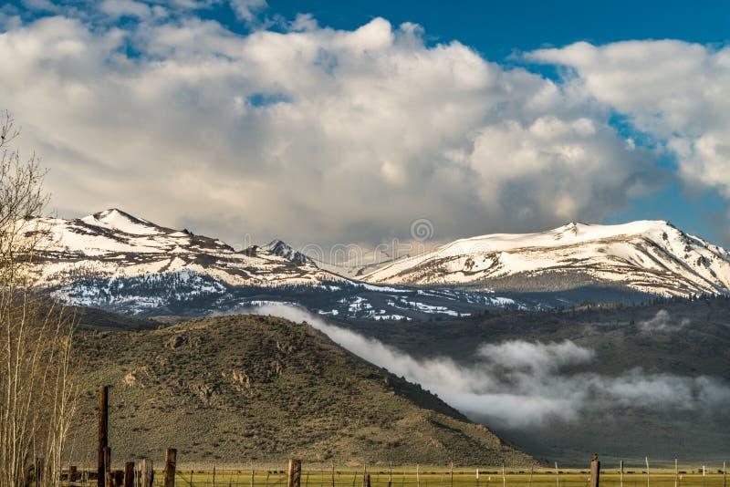 Красивый ландшафт ряда снега покрыл горы около долины Бриджпорт, Калифорния стоковые изображения