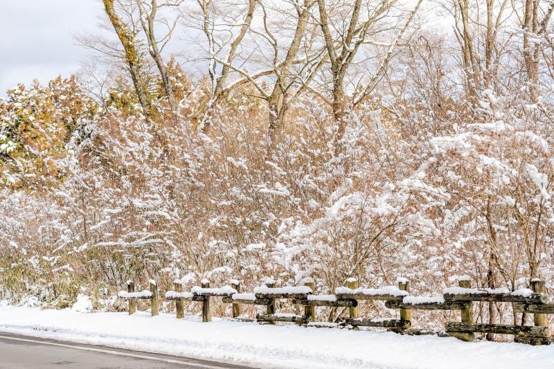 Красивый ландшафт со снегом на ветвях дерева окруженных с загородкой ствола дерева стоковое изображение rf