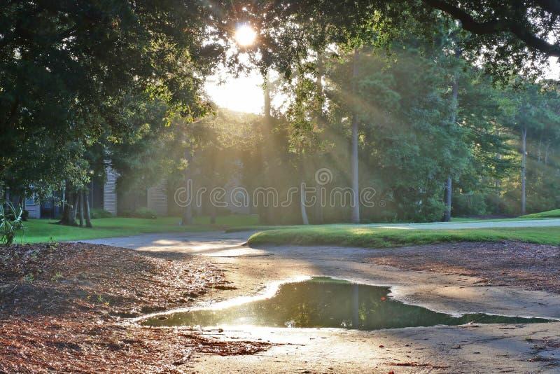 Красивый ландшафт утра лета с южным полем для гольфа стоковое изображение