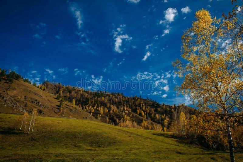 Красивый ландшафт - холмы и луга в солнечном свете, голубое небо со светлыми белыми облаками Предыдущая осень в горах, сезонных стоковое фото