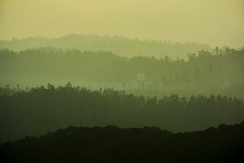 Красивый ландшафт - ooty, Индия стоковое фото rf