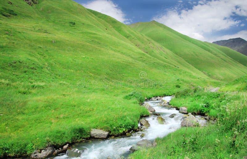 Красивый маленький поток горы в зеленых горах стоковое изображение