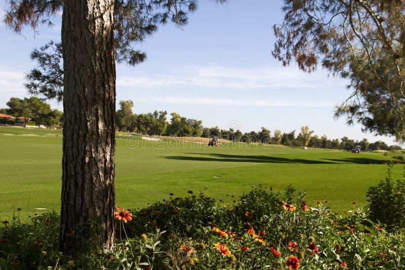 Красивый новый современный проход поля для гольфа в Аризоне стоковое фото