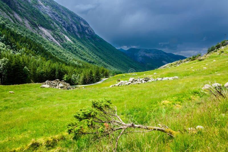 Красивый норвежский ландшафт в горах на побережье Lysefjord, Jorpeland стоковая фотография