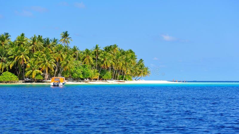 Download Красивый остров Мальдивов тропический Стоковое Фото - изображение насчитывающей мальдивы, baxter: 40578202