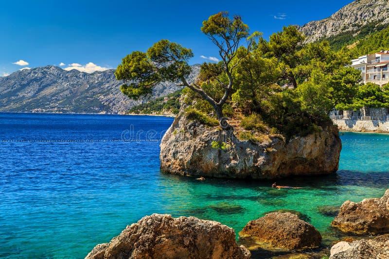 Красивый остров утеса, Brela, Makarska riviera, Далмация, Хорватия, Европа стоковое фото rf