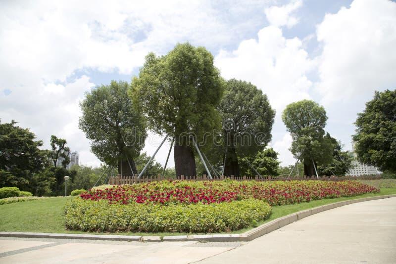 Красивый парк в городе стоковые изображения