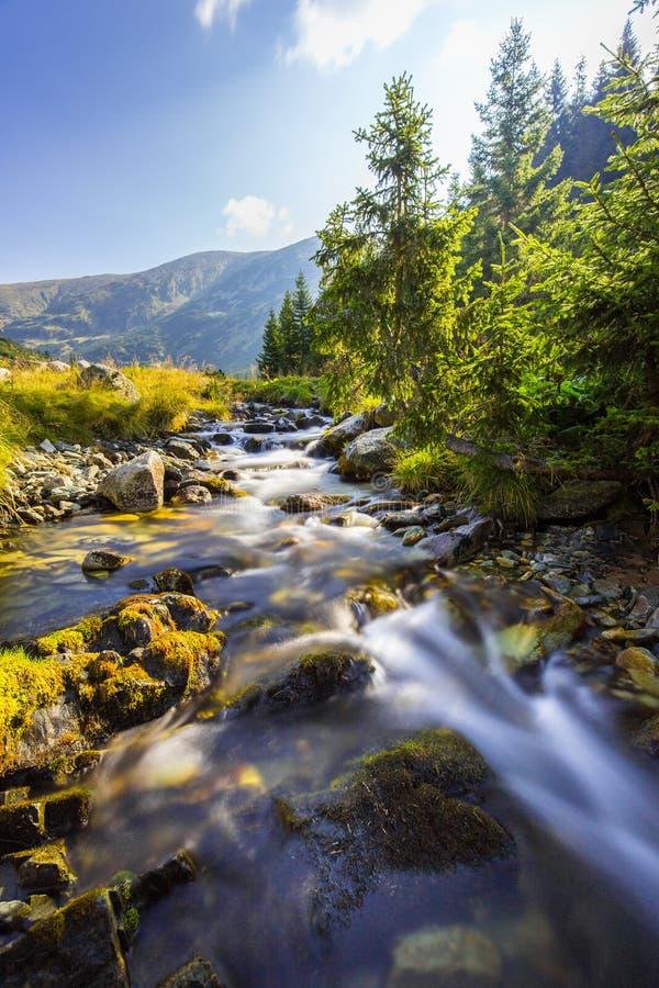 Красивый пейзаж горы в Transylvanian Альпах в лете стоковые фото
