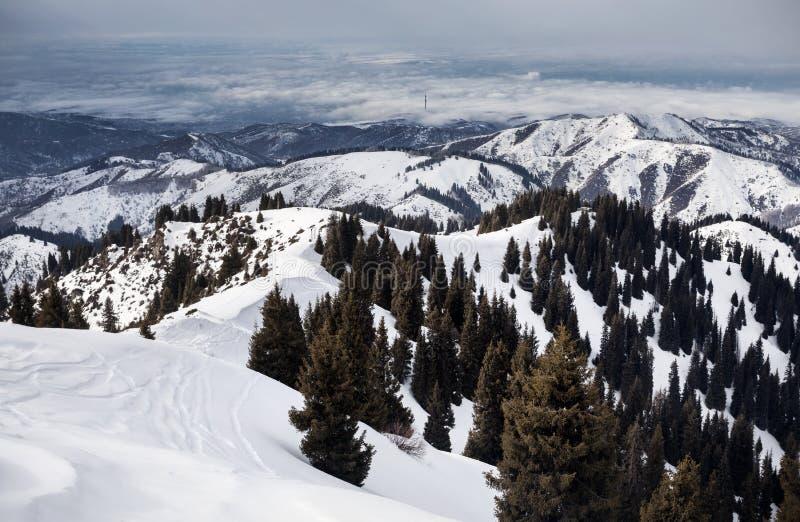 Красивый пейзаж гор зимы стоковая фотография rf