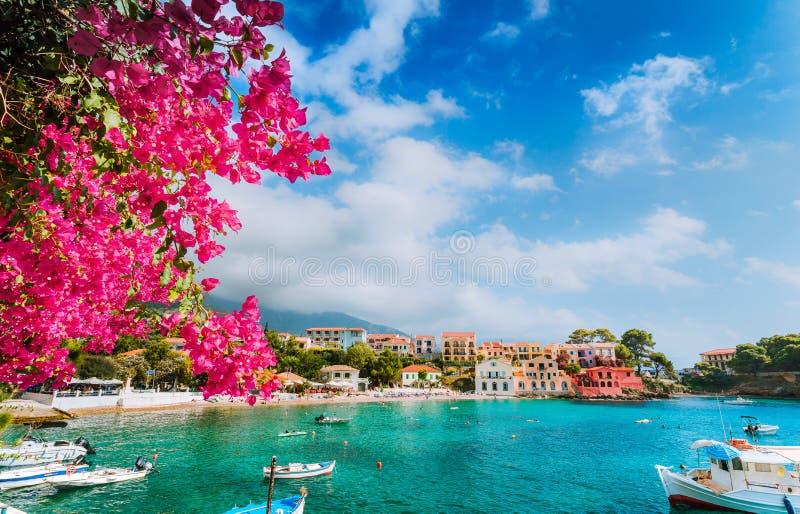 Красивый пейзаж деревни Assos обрамленный с ветвью цветка фуксии цветения мадженты Принципиальная схема каникулы лета стоковое фото