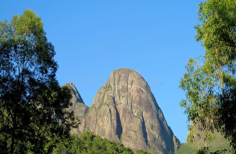 Красивый пейзаж зеленого леса и ровного утеса стоковое фото