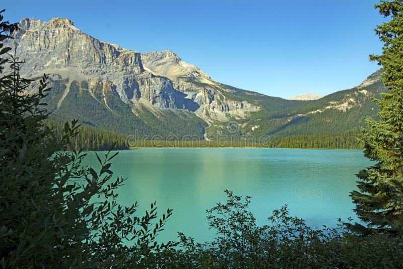 Красивый пейзаж с озером и горой стоковая фотография rf