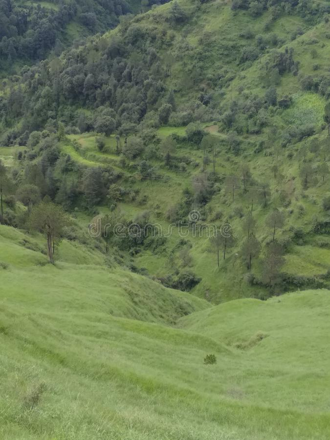 Красивый пейзаж shimla стоковая фотография