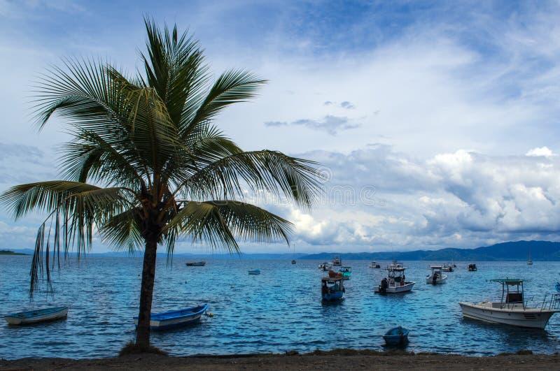 Красивый песчаный пляж - Коста-Рика стоковое фото