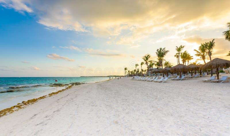 Красивый пляж с белым песком в Akumal, Мексике - пляже залива рая в Quintana Roo - карибское побережье - заход солнца на Майя Рив стоковые изображения rf