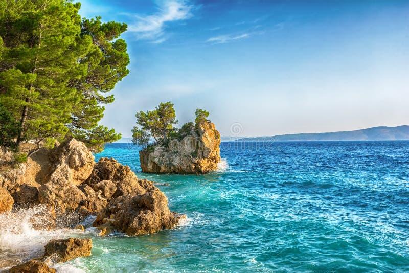 Красивый пляж Punta Rata в Brela, Makarska Ривьере, Далмации, Хорватии Предпосылка курорта перемещения Лето vacatioan скопируйте  стоковая фотография