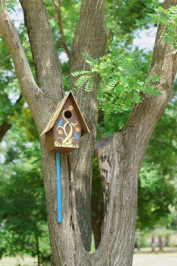 Красивый покрашенный пестротканый birdhouse в парке города стоковые фотографии rf