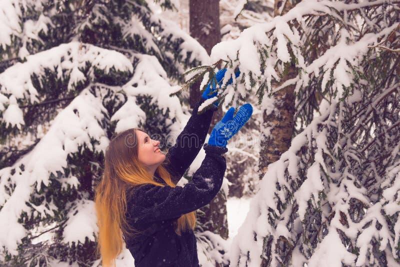 Красивый портрет девушки в лесе зимы стоковая фотография
