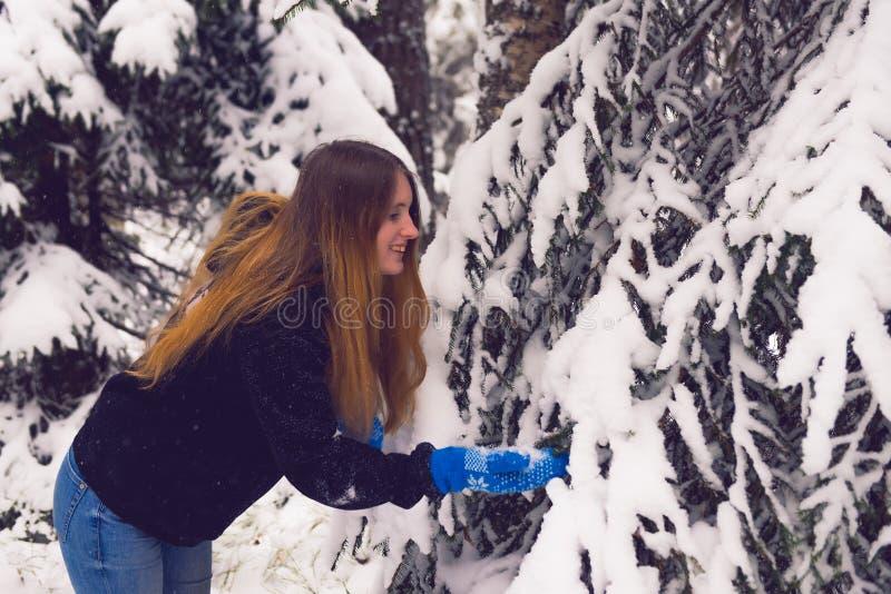 Красивый портрет девушки в лесе зимы стоковые фотографии rf