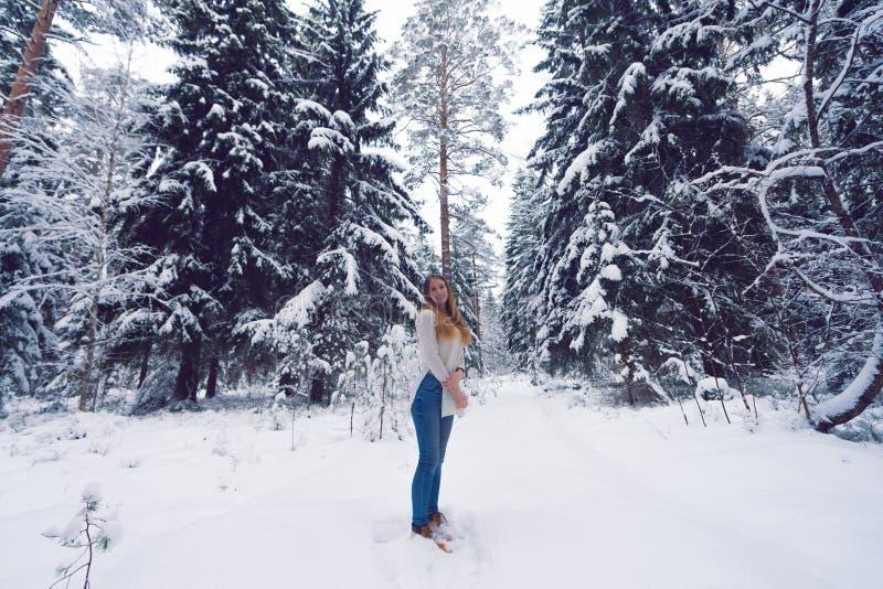 Красивый портрет девушки в лесе зимы стоковые изображения rf
