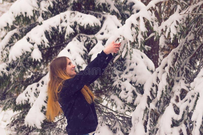 Красивый портрет девушки в лесе зимы стоковая фотография rf